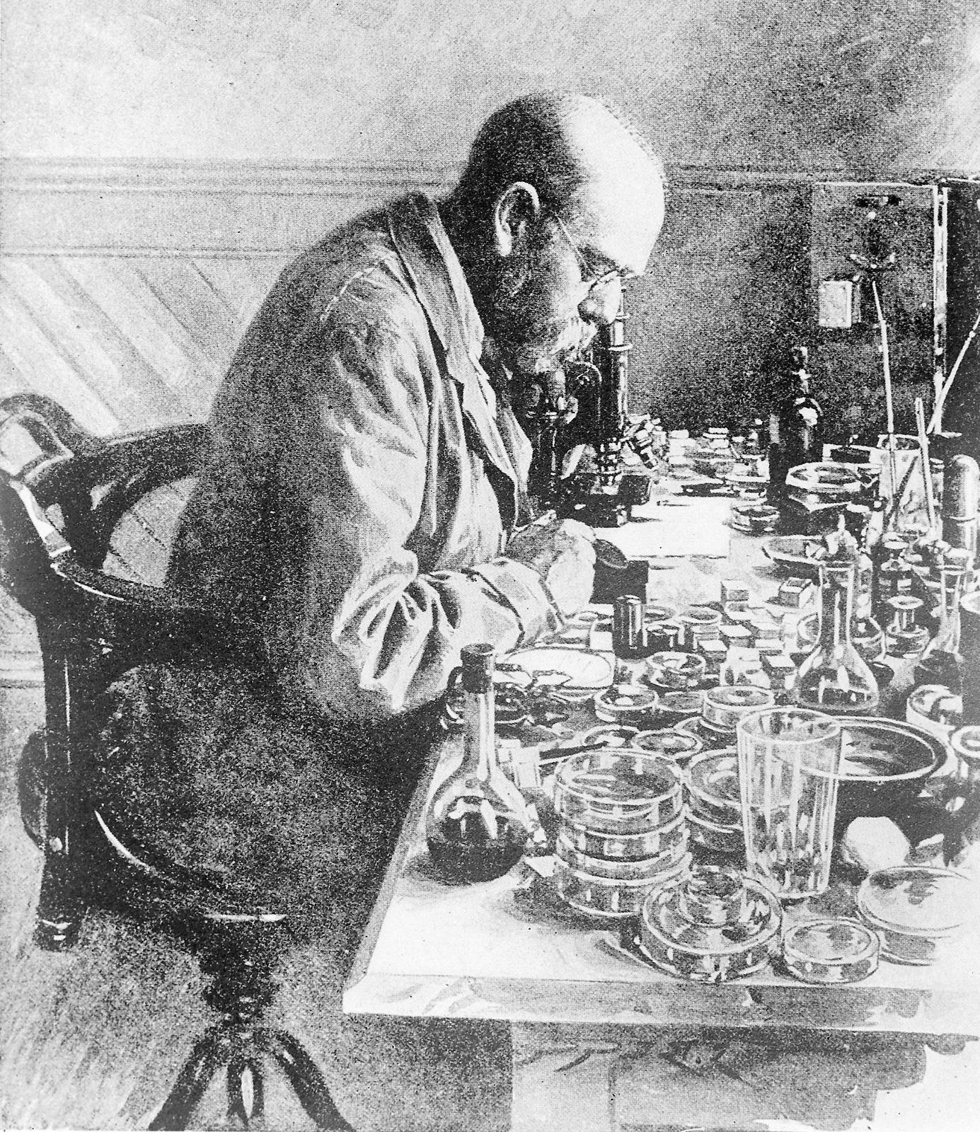 Robert H Koch working in his laboratory